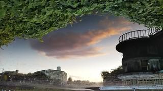 池の雲.jpg