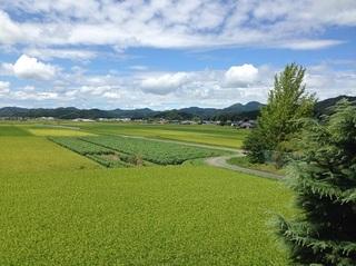 篠山.jpg